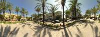 Image of The ''100 palm trees'' squareRhodes Rhodos Rodos Photo